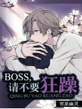 boss,请不要狂躁