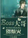 boss大哥,别惹火