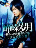 崢嶸歲月:陳小天的辛秘奮鬥之路