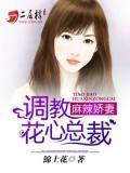 麻辣娇妻:调教花心总裁