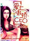 愛上傲嬌CEO
