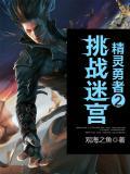 精灵勇者2挑战迷宫