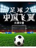 足球之中国飞翼