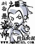 三国之刘备是盗帅
