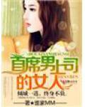豪门情斗·首席男上司的女人