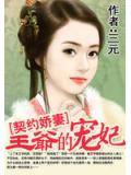契約嬌妻:王爺的寵妃
