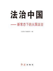 法治中國:新常態下的大國法治